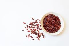Άσπρο πιάτο και διεσπαρμένο piquin καψικό annuum Peq πιπεριών πουλιών Στοκ φωτογραφίες με δικαίωμα ελεύθερης χρήσης