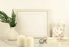 Άσπρο πρότυπο πλαισίων με τα brances thuja στο άσπρο βάζο στοκ εικόνες