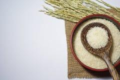 Άσπρο ρύζι και ορυζώνας σε ένα άσπρο υπόβαθρο Στοκ Φωτογραφίες
