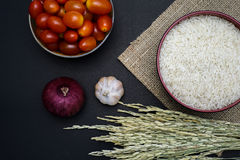Άσπρο ρύζι και ορυζώνας στο υπόβαθρο Στοκ Φωτογραφίες