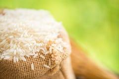 Άσπρο ρύζι στοκ εικόνα