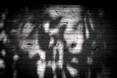 Άσπρο σκοτεινό δέντρο σκιών τουβλότοιχος για το υπόβαθρο Στοκ φωτογραφία με δικαίωμα ελεύθερης χρήσης