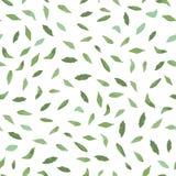 Άσπρο σχέδιο με τα πράσινα φύλλα ελεύθερη απεικόνιση δικαιώματος