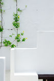 Άσπρο σχέδιο τοίχων με τις εγκαταστάσεις Στοκ φωτογραφία με δικαίωμα ελεύθερης χρήσης