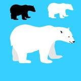 Άσπρο σύνολο σκιαγραφιών πολικών αρκουδών Στοκ εικόνες με δικαίωμα ελεύθερης χρήσης