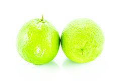 Άσπρο υπόβαθρο λεμονιών στοκ φωτογραφία