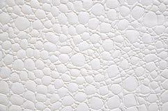 Άσπρο υπόβαθρο κύκλων μορφής χρώματος ελεύθερο Στοκ φωτογραφία με δικαίωμα ελεύθερης χρήσης