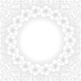 Άσπρο υπόβαθρο Στοκ εικόνες με δικαίωμα ελεύθερης χρήσης