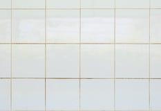 Άσπρο υλικό πήλινου είδους μωσαϊκών κεραμιδιών στιλπνό στο λουτρό Στοκ Εικόνες
