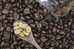 Άσπρο φασόλι καφέ στο κουτάλι Στοκ Εικόνα