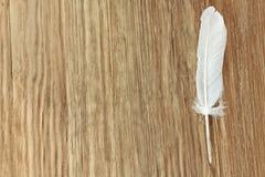 Άσπρο φτερό πουλιών στο καφετί ξύλινο υπόβαθρο με το κενό διαστημικό φ Στοκ φωτογραφίες με δικαίωμα ελεύθερης χρήσης