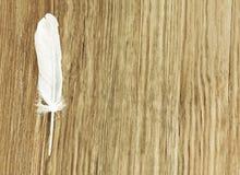 Άσπρο φτερό πουλιών στο καφετί ξύλινο υπόβαθρο με το κενό διαστημικό φ Στοκ Εικόνες