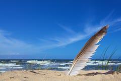 Άσπρο φτερό στο μπλε υπόβαθρο ουρανού στοκ εικόνα