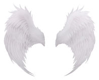 Άσπρο φτερό φτερών πουλιών, απομονωμένη φτέρωμα άσπρη χρήση φ υποβάθρου στοκ φωτογραφία