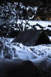 Άσπρο χιονώδες υπόβαθρο με το δέντρο και σκυλόσπιτο στην πίσω αυλή τη νύχτα Στοκ Φωτογραφίες