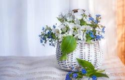 Άσπρο ψάθινο μικρό καλάθι forget-me-nots και της Apple λουλουδιών σε ένα ελαφρύ υπόβαθρο μια ηλιόλουστη ημέρα Το οριζόντιο πλαίσι Στοκ φωτογραφίες με δικαίωμα ελεύθερης χρήσης