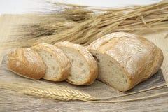Άσπρο ψωμί με τα αυτιά του καλαμποκιού στοκ φωτογραφίες με δικαίωμα ελεύθερης χρήσης
