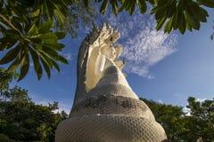 Άσπρο Bhuddha Στοκ εικόνα με δικαίωμα ελεύθερης χρήσης