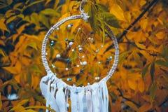 Άσπρο dreamcatcher στο δέντρο φθινοπώρου στοκ φωτογραφία με δικαίωμα ελεύθερης χρήσης