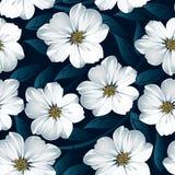 Άσπρο floral άνευ ραφής σχέδιο με τα μπλε φύλλα Στοκ Φωτογραφίες