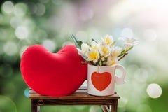 Άσπρο plumeria ή frangipani λουλουδιών στο καλό whi σχεδίων καρδιών Στοκ Εικόνες