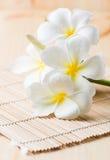 Άσπρο Plumeria στο ξύλινο χαλί μπαμπού Στοκ φωτογραφίες με δικαίωμα ελεύθερης χρήσης