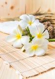Άσπρο Plumeria στο ξύλινο χαλί μπαμπού Στοκ φωτογραφία με δικαίωμα ελεύθερης χρήσης