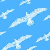 Άσπρο seagull σύστασης σχεδίων άνευ ραφής στο μπλε ουρανού Στοκ φωτογραφία με δικαίωμα ελεύθερης χρήσης