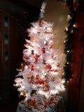 Άσπρο Teddy αντέχει το χριστουγεννιάτικο δέντρο Στοκ φωτογραφία με δικαίωμα ελεύθερης χρήσης