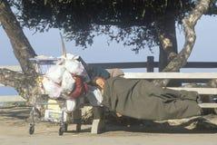Άστεγος ύπνος γυναικών με τις κατοχές κάρρων αγορών, Σάντα Μόνικα, Καλιφόρνια Στοκ Φωτογραφίες