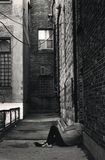άστεγο άτομο Στοκ εικόνες με δικαίωμα ελεύθερης χρήσης