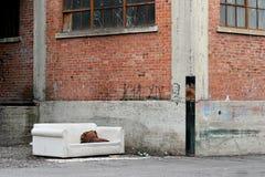 άστεγο καθιστικό Στοκ Εικόνες