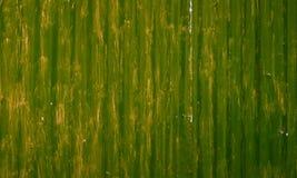 Άσχημα χρωματισμένο κυματισμένο πράσινο υπόβαθρο φύλλων μετάλλων Στοκ Φωτογραφία