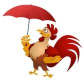 Άσχημος καιρός Αστείος κόκκινος κόκκορας με την ομπρέλα Στοκ φωτογραφία με δικαίωμα ελεύθερης χρήσης