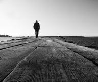 άτομα γεφυρών ξύλινα Στοκ Φωτογραφίες