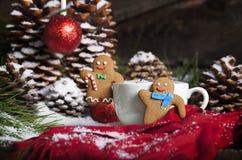 Άτομα μελοψωμάτων Χριστουγέννων και ζεστό ποτό Στοκ φωτογραφία με δικαίωμα ελεύθερης χρήσης