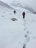 Άτομα που περπατούν στον παγετώνα του ηφαιστείου Antisana μια νεφελώδη ημέρα στην οικολογική επιφύλαξη Antisana Στοκ Φωτογραφία