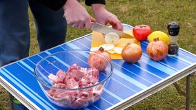Άτομα που τεμαχίζουν το κρεμμύδι για BBQ απόθεμα βίντεο
