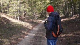 Άτομα σε ένα δάσος πεύκων φιλμ μικρού μήκους