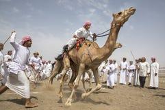 Άτομα στις καμήλες στην έναρξη μιας φυλής στοκ εικόνες