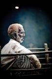 άτομο αλόγων κάρρων Στοκ Φωτογραφία