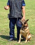 Άτομο αστυνομίας με το σκυλί του Στοκ Φωτογραφία