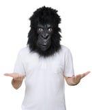 Άτομο γορίλλων Στοκ Εικόνα