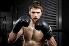 Άτομο γυμνοστήθων με τα γάντια boxe Στοκ φωτογραφίες με δικαίωμα ελεύθερης χρήσης