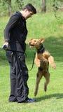 Άτομο και σκυλί Στοκ Φωτογραφία