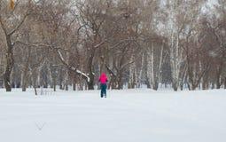 Άτομο κόκκινο να κάνει σκι χωρών σακακιών διαγώνιο στο χειμερινό πάρκο, η άποψη από την πλάτη Στοκ εικόνα με δικαίωμα ελεύθερης χρήσης