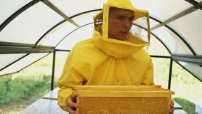 Άτομο μελισσοκόμων που περπατά με τα ξύλινα πλαίσια που λειτουργούν στο μελισσουργείο Στοκ φωτογραφίες με δικαίωμα ελεύθερης χρήσης