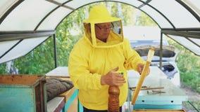Άτομο μελισσοκόμων που ποτίζει το ξύλινο πλαίσιο με τον ψεκαστήρα και την οργάνωση στην κυψέλη στο μελισσουργείο Στοκ φωτογραφία με δικαίωμα ελεύθερης χρήσης
