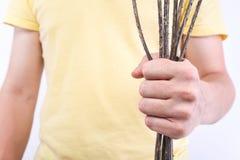 Άτομο με μια ξηρά και τραχιά ανθοδέσμη teasels Σύλληψη - αποσύνθεση των σχέσεων, διαζύγιο Στοκ φωτογραφία με δικαίωμα ελεύθερης χρήσης