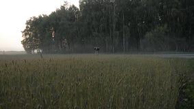 Άτομο με μια παλαιά εθνική οδό περιπάτων βαλιτσών φιλμ μικρού μήκους